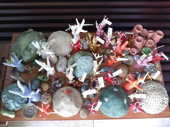 サンゴ粘土_R.jpg